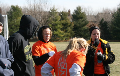 Powderpuff Pummelling