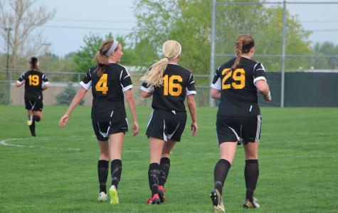 Soccer Sunflower League Champs