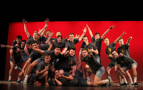 Mr. Viking contestants strike poses during their opening performance.