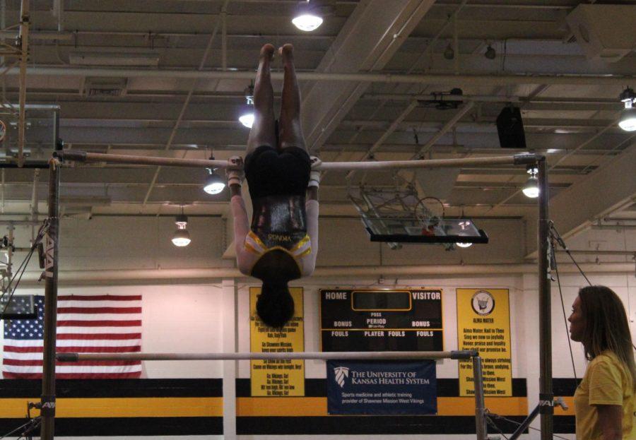 gymnastics_nicolebrewton18+copy
